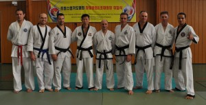 Stages Hapkido et Taekkyon