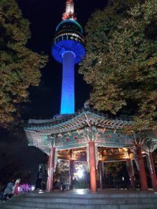 Jour 8 - Visite de la tour N-Tower - Yongu Taekwondo
