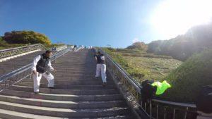 Voyage et stage Taekwondo Corée 2017